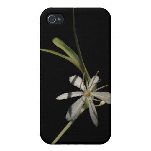 Cas de ~ de fleur d'usine d'araignée coque iPhone 4 et 4S