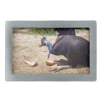 Cassowary-Vogel, der Melonen isst, Rechteckige Gürtelschnallen