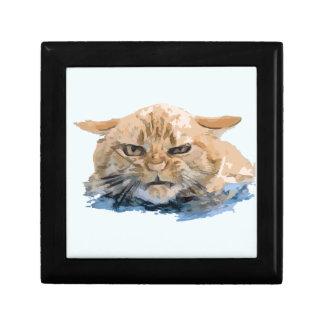 CAT 10 GESCHENKBOX