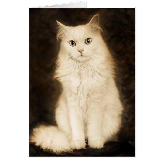 CAT GRUßKARTE