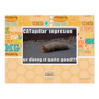 CATapillar Postkarte