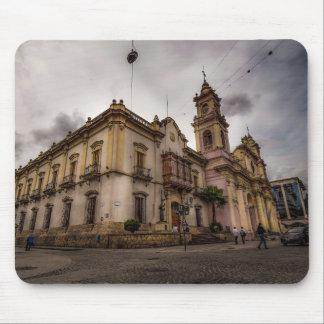 Catedral De Salta Mousepads
