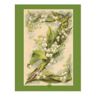 Catherine Klein Lilie des Blumen-Alphabet-Z des Postkarte