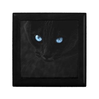 cats blue eyes erinnerungskiste
