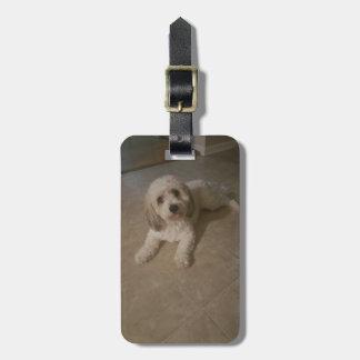 Cavachon Foto-Gepäck-Umbau, addieren Ihr HundeFoto Kofferanhänger