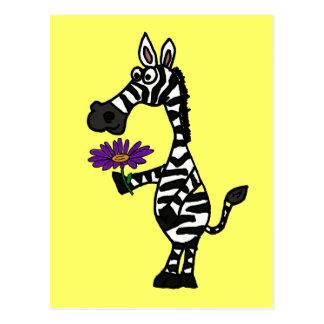 CD lustiger Zebra mit Gänseblümchen-Postkarte Postkarte
