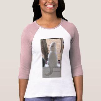 Celeste sucht Shirt
