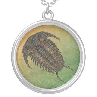 Ceraurus Fossil Trilobite Halskette Mit Rundem Anhänger