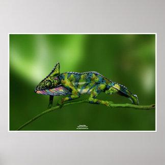 Chameleon by Johannes Stötter Poster