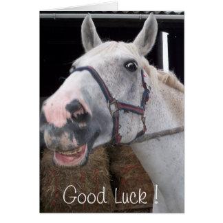Chance de souhait de cheval de sourire bonne carte de vœux