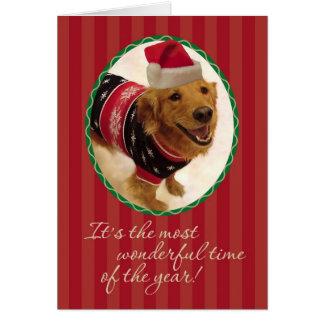 Chandail de mauvais goût de Noël de chien d'arrêt Carte De Vœux
