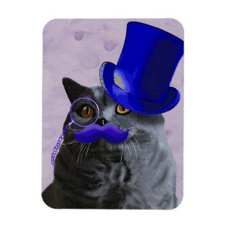 Chat gris avec le chapeau supérieur et la magnet
