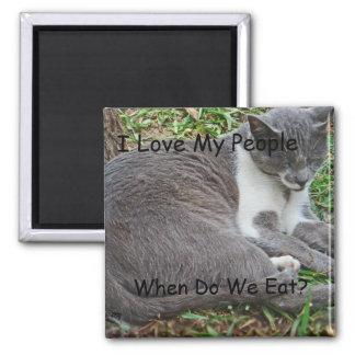 Chat gris en parc aimants pour réfrigérateur