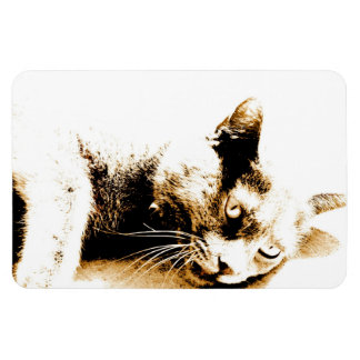 Chat gris magnet en rectangle