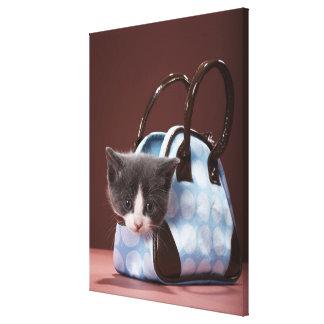 Chaton dans le sac à main impression sur toile