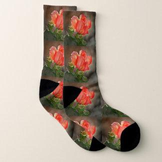 Chaussettes rouges de fleur de cactus
