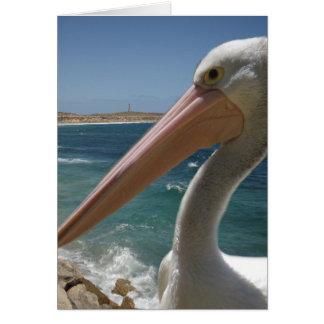 Cheeky_Pelican, _Note_Greeting_Card Karte