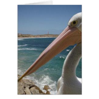 Cheeky_Pelican, _Small_Birthday_Greeting_Card. Karte