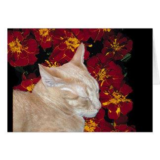 Cheshire-Kätzchen in den Ringelblumen Karte