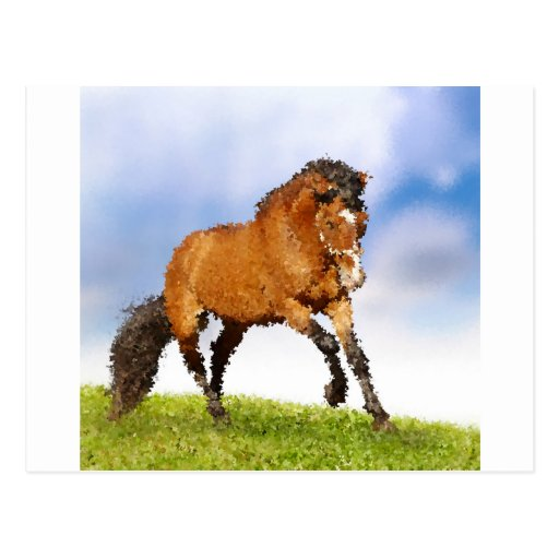 Cheval espiègle carte postale