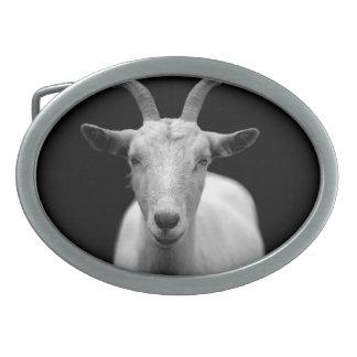 Chèvre Boucles De Ceinture Ovales