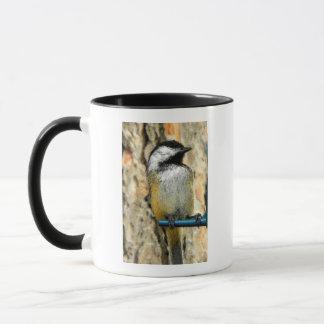 Chickadee an der Zufuhr Tasse