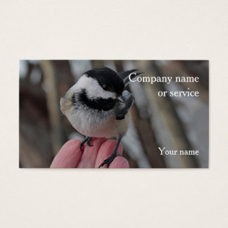 Chickadee Visitenkarte