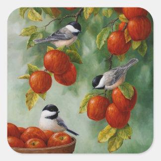 Chickadee-Vögel Apple ernten Quadratischer Aufkleber