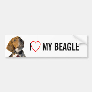 Chien mignon de beagle autocollant de voiture