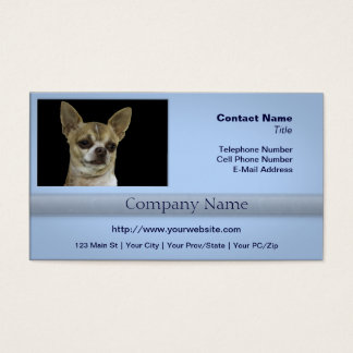 Chihuahua mit Haltung Visitenkarte