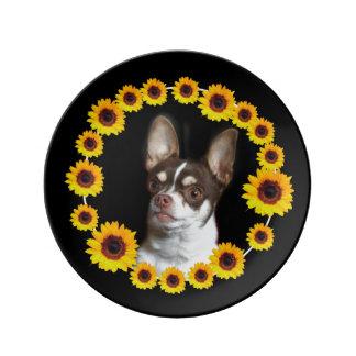 Chihuahua- und Sonnenblumeporzellanplatte Porzellanteller
