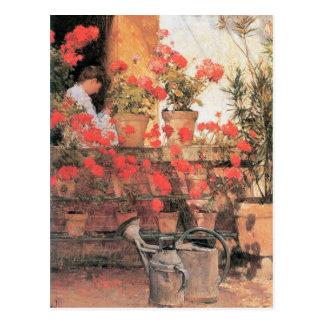 Childe Hassam - rote Pelargonien Postkarte