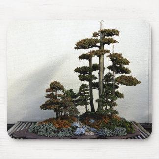 Chinesische Wacholderbusch-Bonsais-Bäume Mousepads