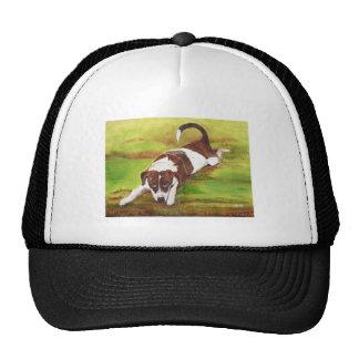 Chiot espiègle casquette