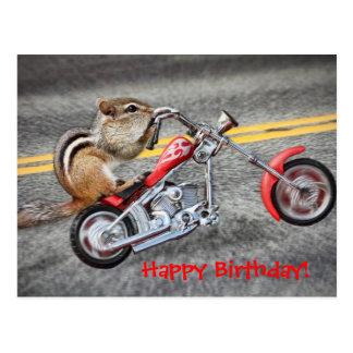 Chipmunk-Radfahrer, der ein Motorrad reitet Postkarte