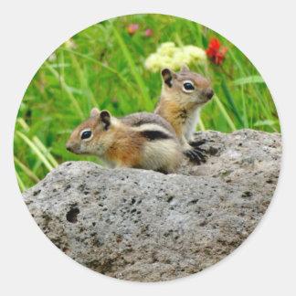 Chipmunks und Wildblumen Runder Aufkleber