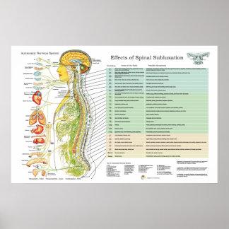 Chiropraktiksubluxations-spinale Nerven Poster