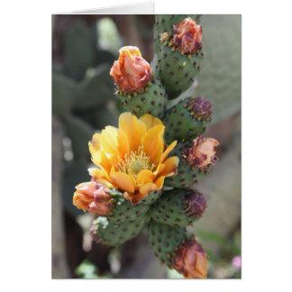 Cholla Blume Mitteilungskarte