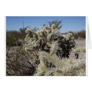 Cholla Kaktus Karte