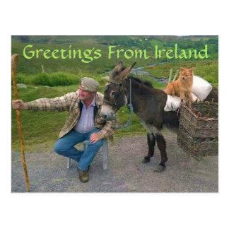 Choses que vous verrez en Irlande Carte Postale