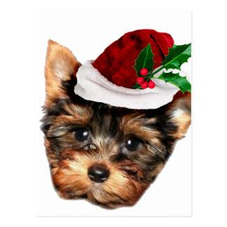 Chrismtas Yorkshire Terrier Hündchen Postkarte