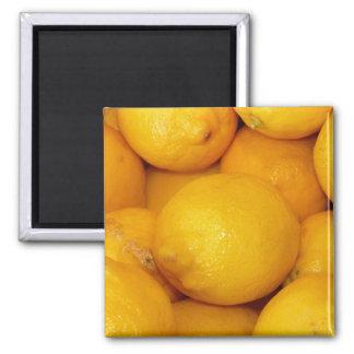 Citrons frais magnet carré