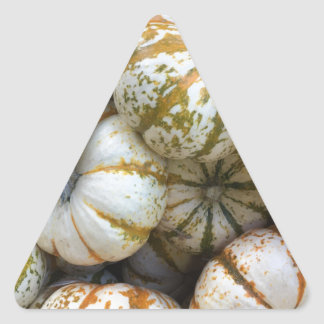Citrouilles lunatiques sticker triangulaire
