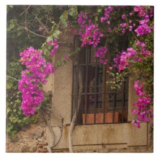 Ciudad monumental, Blume-bedeckte Gebäude Keramikfliese