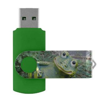 Clé USB La grenouille