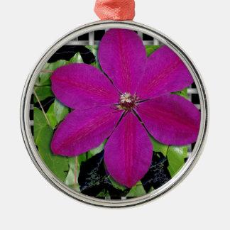 Clematis u. Webart Silbernes Ornament