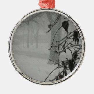 Clematis- und Schneefall während eines Blizzards Silbernes Ornament