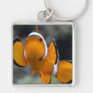 clownfish, die Front gegenüberstellen Schlüsselanhänger