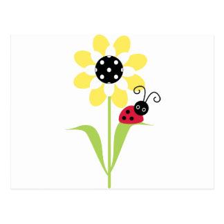 Coccinelle sur la fleur cartes postales