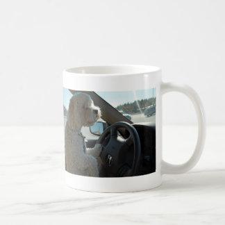 Cockapoo am Rad Kaffeetasse